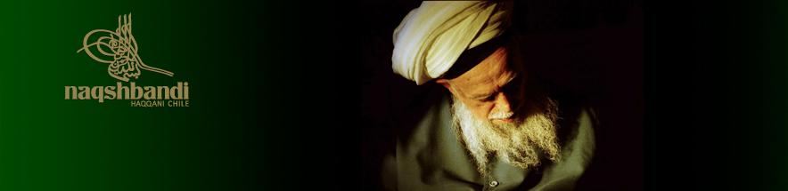 sufi.cl